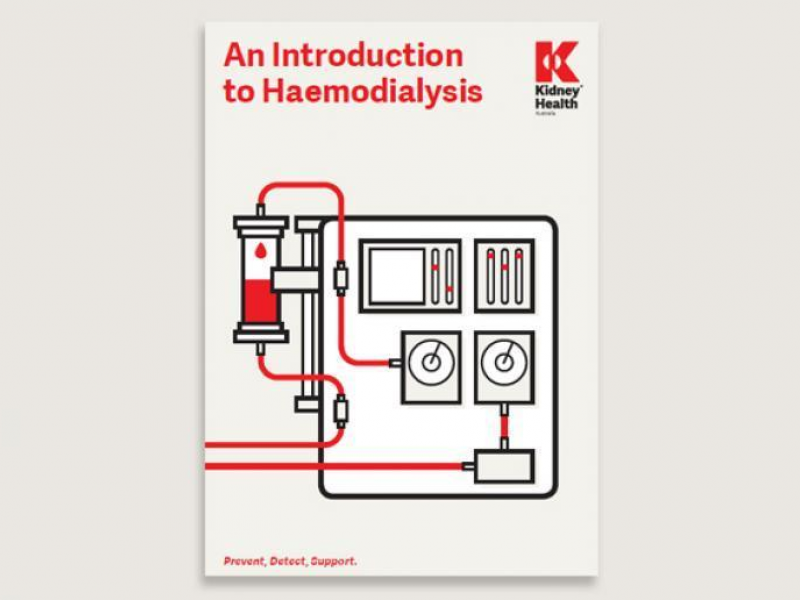 1412 an introduction to haemodialysis kidney health australia publication 1 2x