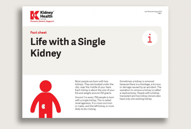 Life with a single kidney fact sheet